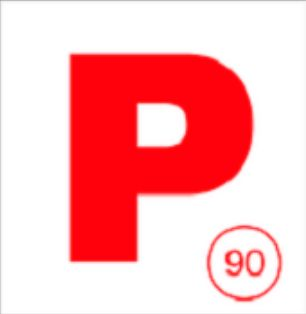p plate 3.jpg